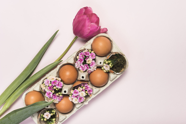 pink-tulip-with-eggs-rack_23-2148072806